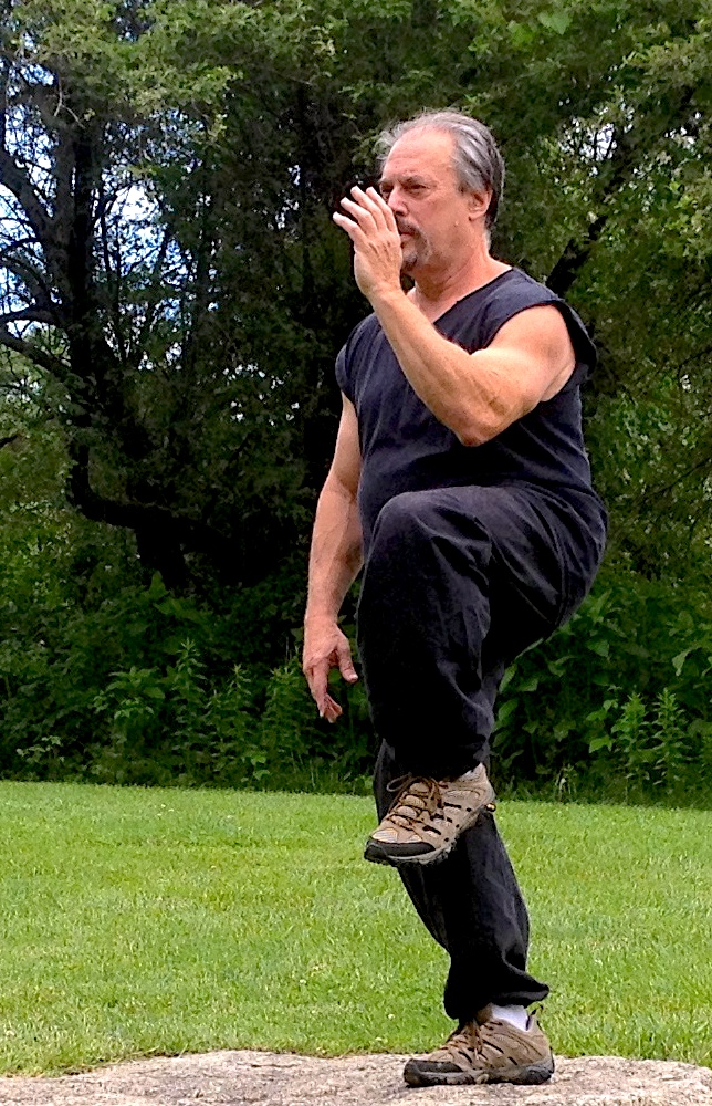Tai Chi Practitioner Practicing Golden Rooster