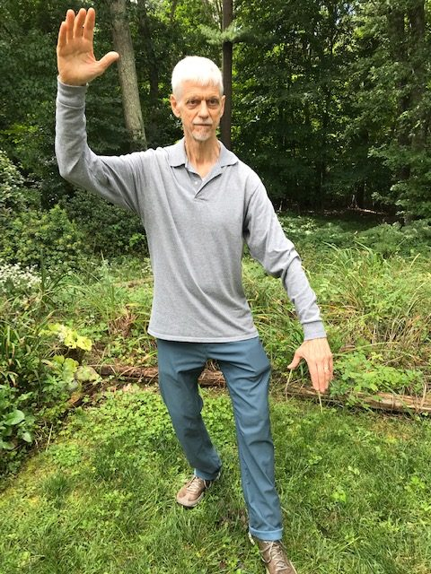 Tai Chi Instructor practicing White Crane Spreads Wings Posture