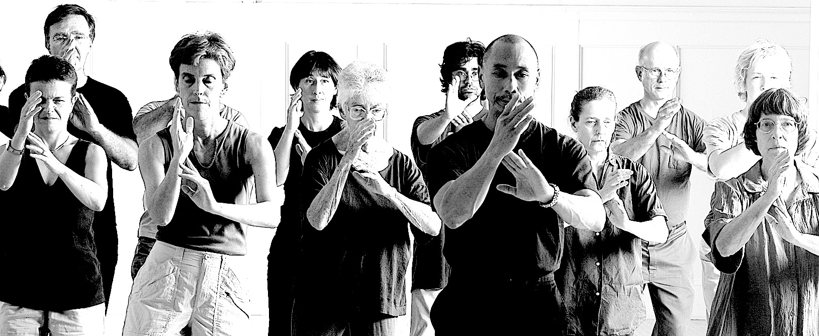 Tai Chi Group of Students Practicing Postures